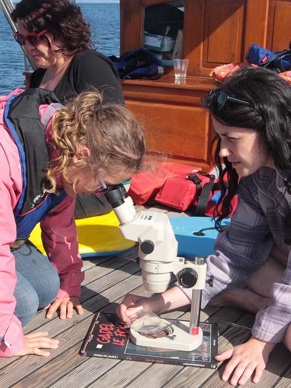 Microscope sur le bateau - association - skeaf